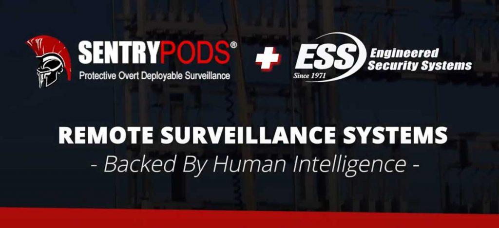 remote surveillance monitoring services